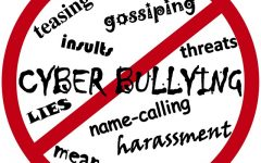 Government Involvement in School Bullying