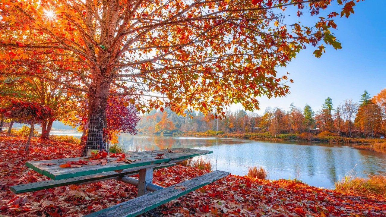 Best Places to Explore and Visit in Fall